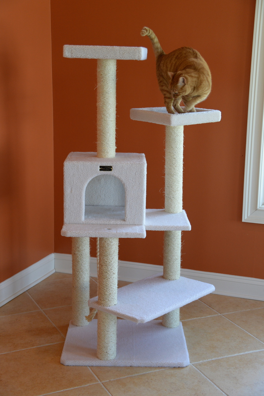 Cat Tree Store Classic Cat Tree B5701/Cat Tower/Cat Condo