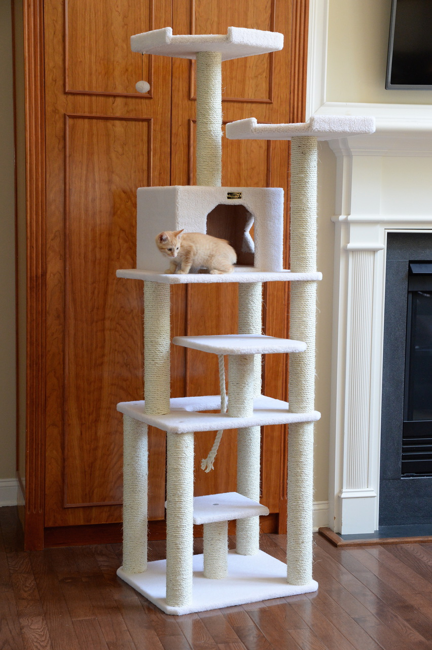 Cat Tree Store Classic Cat Tree B7801/Cat Tower/Cat Condo