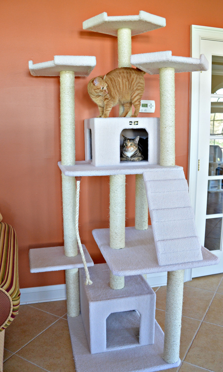 Cat Tree Store Classic Cat Tree B8201/Cat Tower/Cat Condo