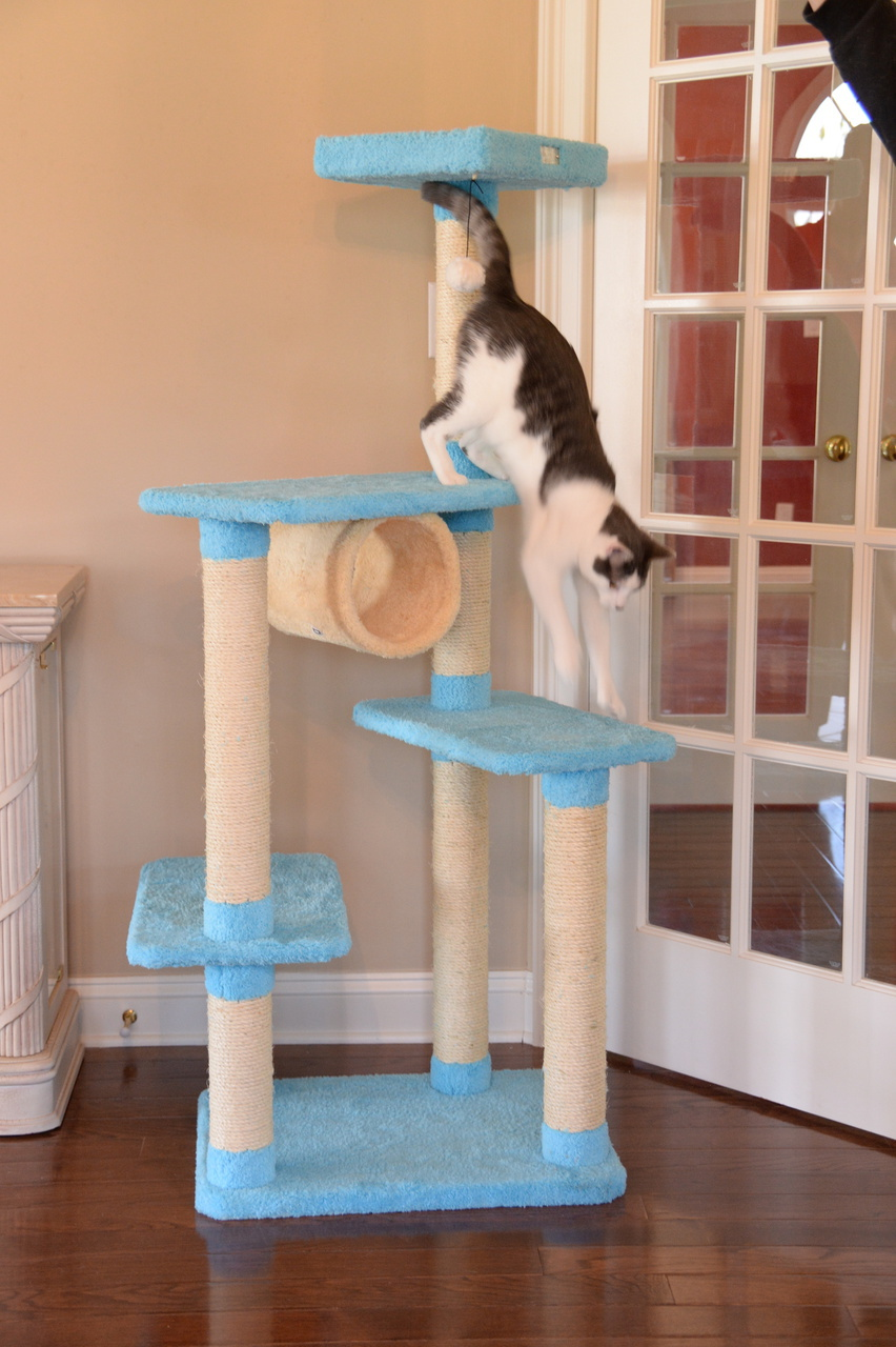 Cat Tree Store Premium Cat Tree X6105/Cat Tower/Cat Condo